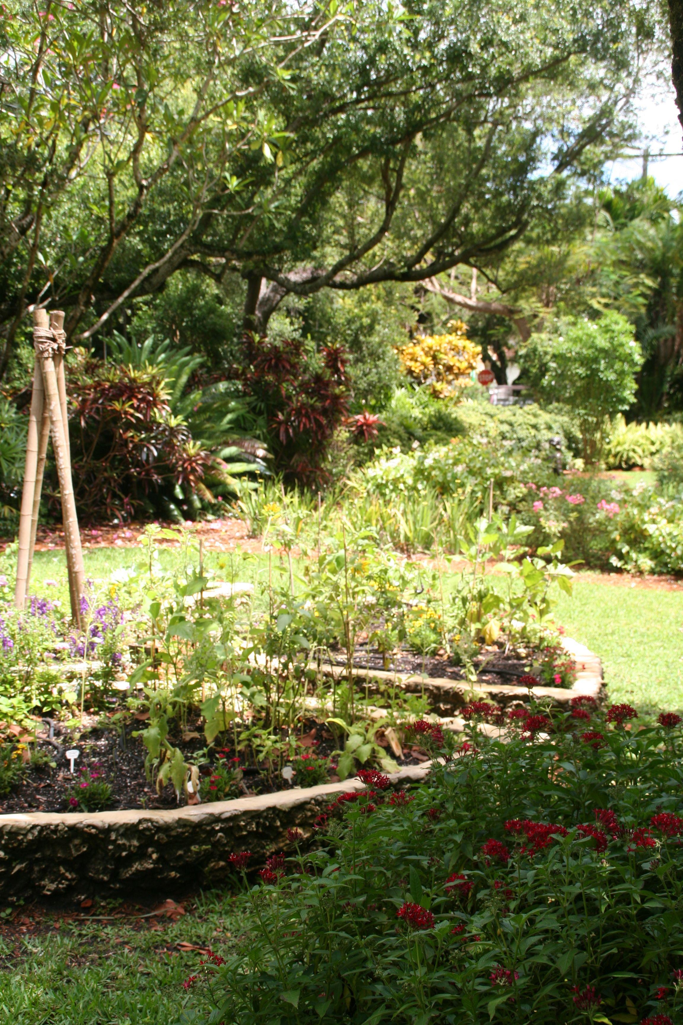 Edible Community Gardens Project | Backyard Gardeners